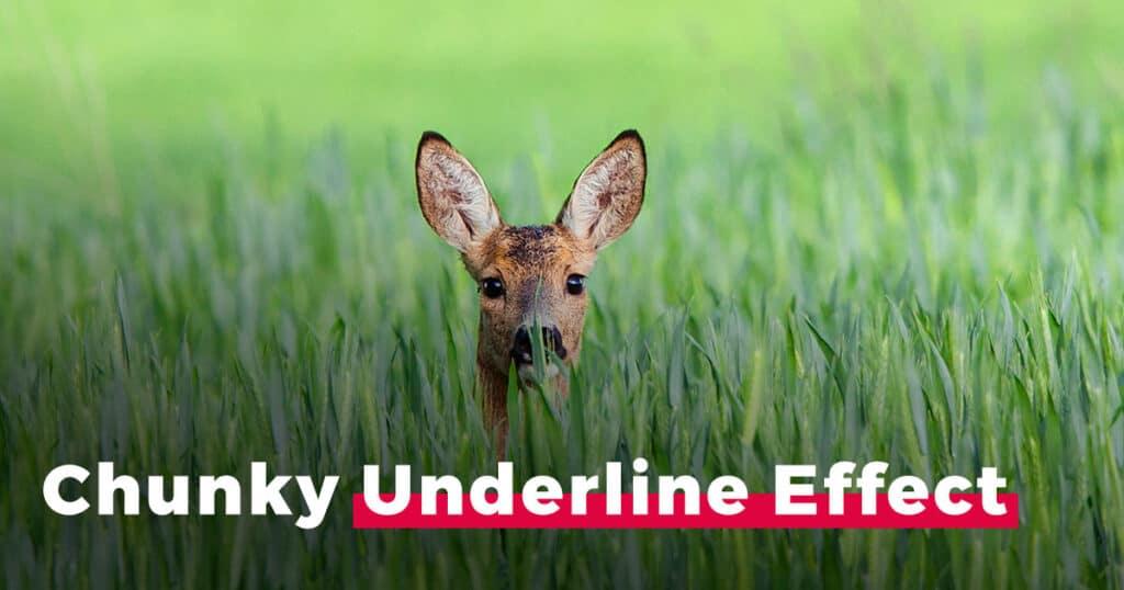 tall-underline-title-effect